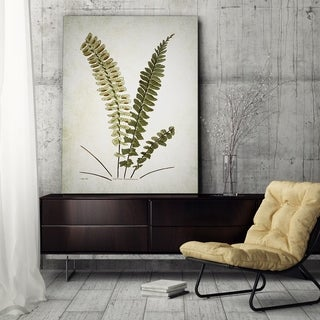 Wexford Home 'Botanical Plate V' Canvas Wall Art