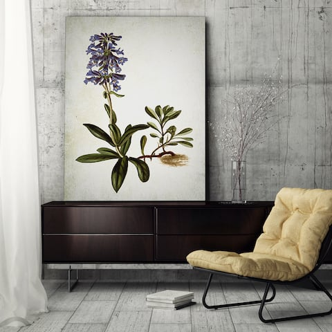 Wexford Home 'Botanical Plate IV' Wrapped Canvas Art