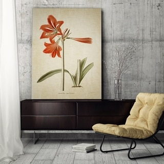 Wexford Home 'Botanical Plate II' Gallery Wrapped Canvas
