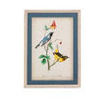 Bassett Mirror Company 'Black-throated Blue Wood Warbler' Framed Wall Art