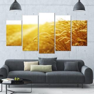 Designart 'Bright Sunset over Wheat Field' Landscape Canvas Wall Artwork - 60x32 5 Panels