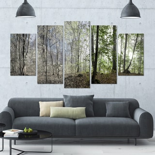 Designart 'Green Morning in Forest Panorama' Landscape Wall Artwork on Canvas - 60x32 5 Panels