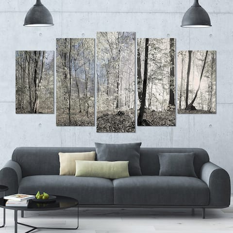 Designart 'Dark Morning in Forest Panorama' Landscape Wall Artwork Print on Canvas - 60x32 5 Panels - Multi-color