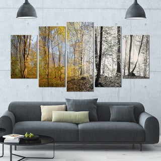 Designart 'Yellow Morning in Forest Panorama' Landscape Wall Artwork on Canvas - 60x32 5 Panels