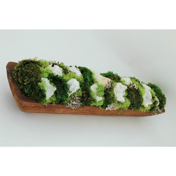 Organic Moss Garden and Amethyst Geode in Wood Log
