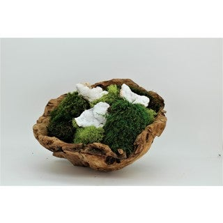 Organic Moss Garden and Quartz Geode in Hand-carved Wood Bowl