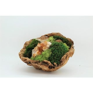 Organic Moss and Citrine Geode Hand Carved Wood Bowl Garden