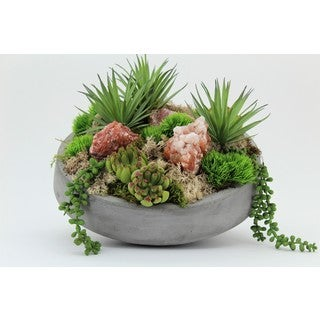 Succulents in Concrete Bowl with Red Calcite