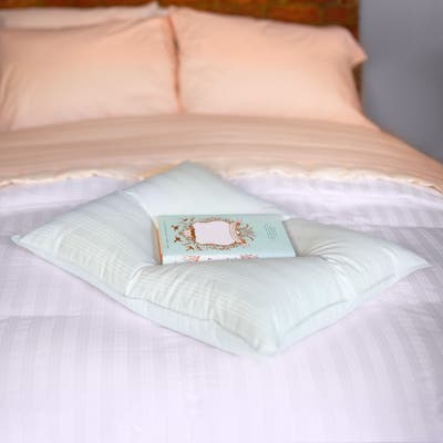 Extra Soft Stomach Sleeper Blue Damask Cotton White Down Pillow