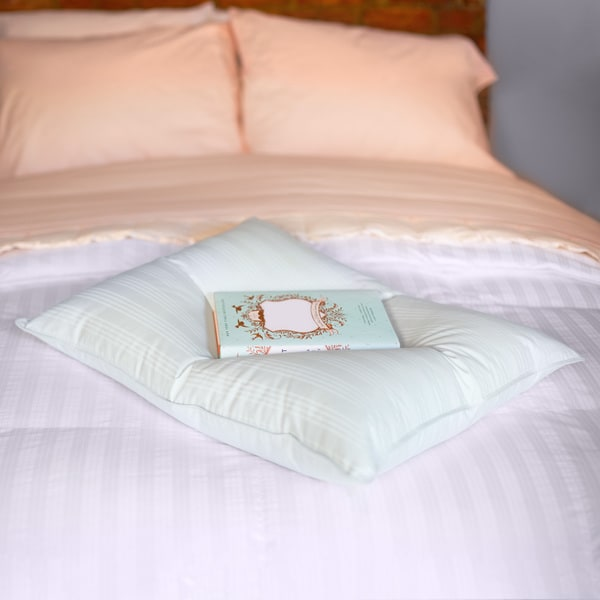 Extra soft stomach sleeper blue damask cotton white down for Best down pillows for stomach sleepers