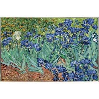 Van Gogh 'Irises' Silver-tone Aluminum Frame 30-inch x 24-inch Poster