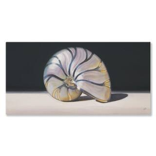 GreenBox 'Nautilus Shell' by Nancy Egan Canvas Wall Art - 24 x 12