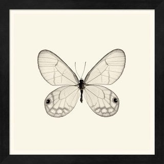 Debra Van Swearingen 'Butterfly I' Framed Art