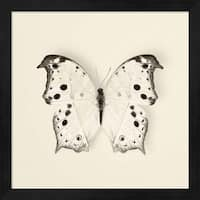 Debra Van Swearingen 'Butterfly IV' Framed Art