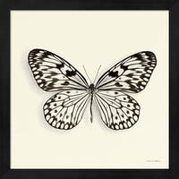 Debra Van Swearingen 'Butterfly V' Framed Art