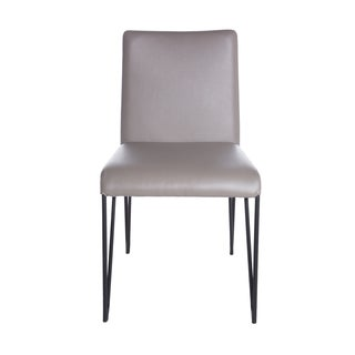 Euro Style Amir Dining Chair (Set of 2)