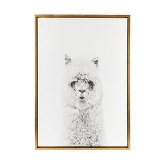 DesignOvation Simon Te Tai 'Sylvie Hairy Alpaca Black and White Portrait' Gold Framed Canvas Wall Art|https://ak1.ostkcdn.com/images/products/14720104/P21249387.jpg?impolicy=medium