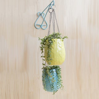 Handmade Heart-Shaped Wall Hanger (Colombia)
