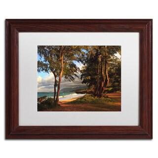 Jason Shaffer 'Hawaii 5' Matted Framed Art