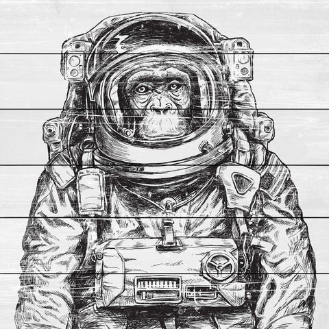 Space Monkey' Painting Print on White Wood