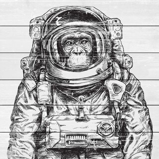 Space Monkey' Painting Print on White Wood (4 options available)
