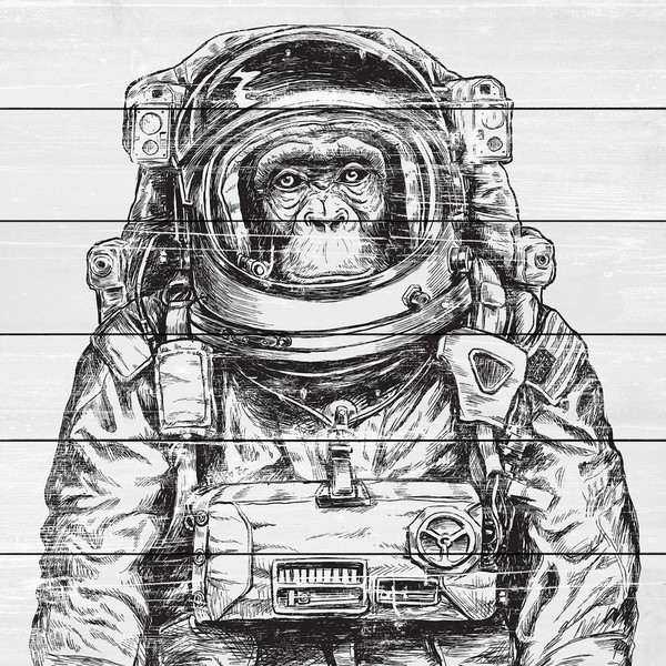Marmont Hill - Handmade Space Monkey Painting Print on White Wood
