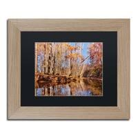 Jason Shaffer 'Beaver Creek 7' Matted Framed Art - Brown