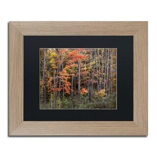 Jason Shaffer 'Autumn Tree Line' Matted Framed Art