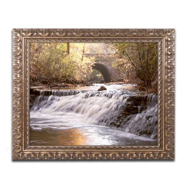 Jason Shaffer 'Avon Falls' Ornate Framed Art
