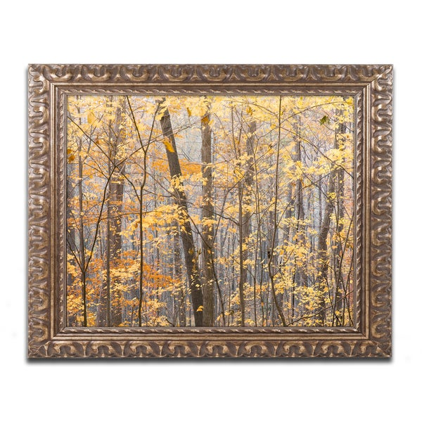 Jason Shaffer 'Autumn Treeline' Ornate Framed Art