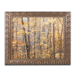 Jason Shaffer 'Autumn Treeline 2' Ornate Framed Art