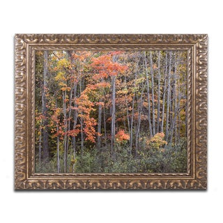 Jason Shaffer 'Autumn Tree Line' Ornate Framed Art