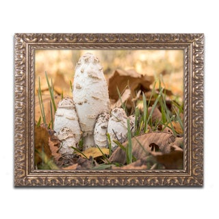 Jason Shaffer 'Autumn Mushrooms' Ornate Framed Art