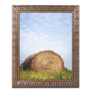 Jason Shaffer 'Ashland' Ornate Framed Art