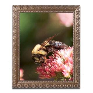 Jason Shaffer 'Bumblebee' Ornate Framed Art