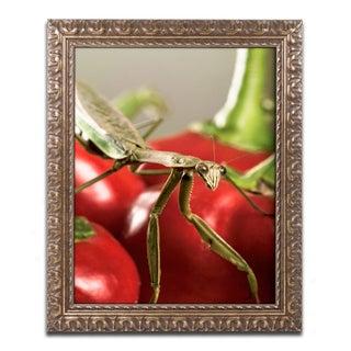 Jason Shaffer 'Praying Mantis & Pepper 2' Ornate Framed Art