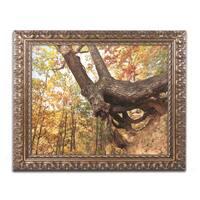 Jason Shaffer 'Tree Of Shelter' Ornate Framed Art