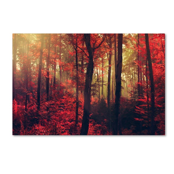Philippe Sainte-Laudy 'Fire Dance' Canvas Art