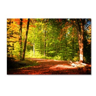 Philippe Sainte-Laudy 'Breaking The Fall Silence' Canvas Art