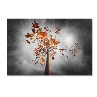 Philippe Sainte-Laudy 'Autumn Rain' Canvas Art - Grey