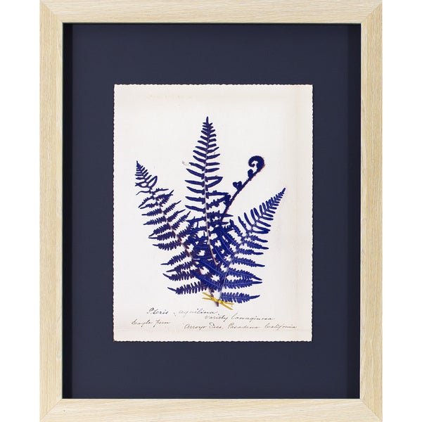 Shop \'Indigo Fern\' Natural Oak Woodgrain Framed Wall Art - Free ...