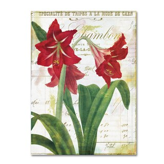 Color Bakery 'Peppermint Amaryllis' Canvas Art