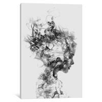 iCanvas 'Dissolve Me' by Dániel Taylor Canvas Print