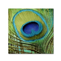 Color Bakery 'Peacock Candy V' Canvas Art