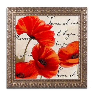 Color Bakery 'Coquelicots Rouge I' Ornate Framed Art