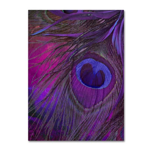 Color Bakery 'Peacock Candy IV' Canvas Art - Purple