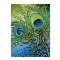Color Bakery 'Peacock Candy I' Canvas Art - Green