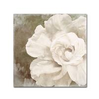 Color Bakery 'Petals Impasto II' Canvas Art - Off-White