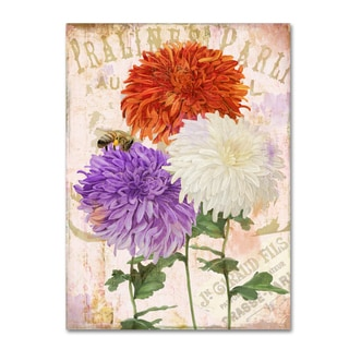 Color Bakery 'Chrysanthemums' Canvas Art