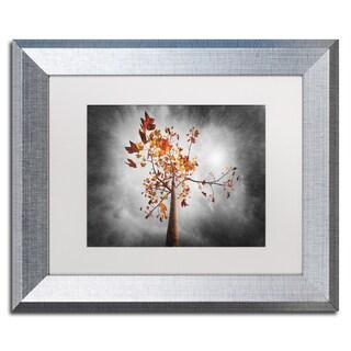 Philippe Sainte-Laudy 'Autumn Rain' Matted Framed Art